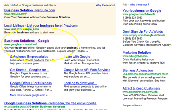 Google Business Solutions Search